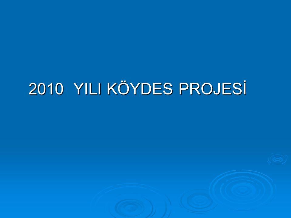 2010 YILI KÖYDES PROJESİ