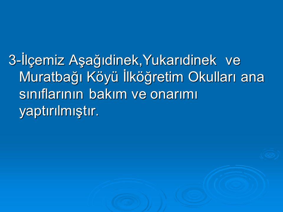 3-İlçemiz Aşağıdinek,Yukarıdinek ve Muratbağı Köyü İlköğretim Okulları ana sınıflarının bakım ve onarımı yaptırılmıştır.