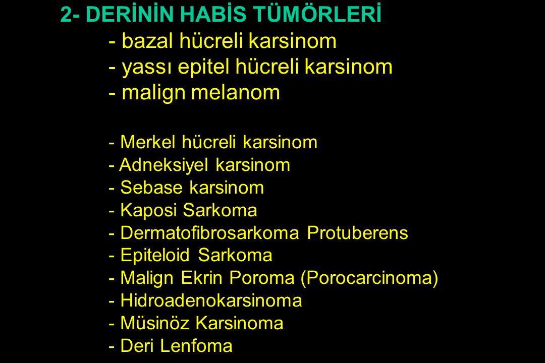 2- DERİNİN HABİS TÜMÖRLERİ - bazal hücreli karsinom - yassı epitel hücreli karsinom - malign melanom - Merkel hücreli karsinom - Adneksiyel karsinom -