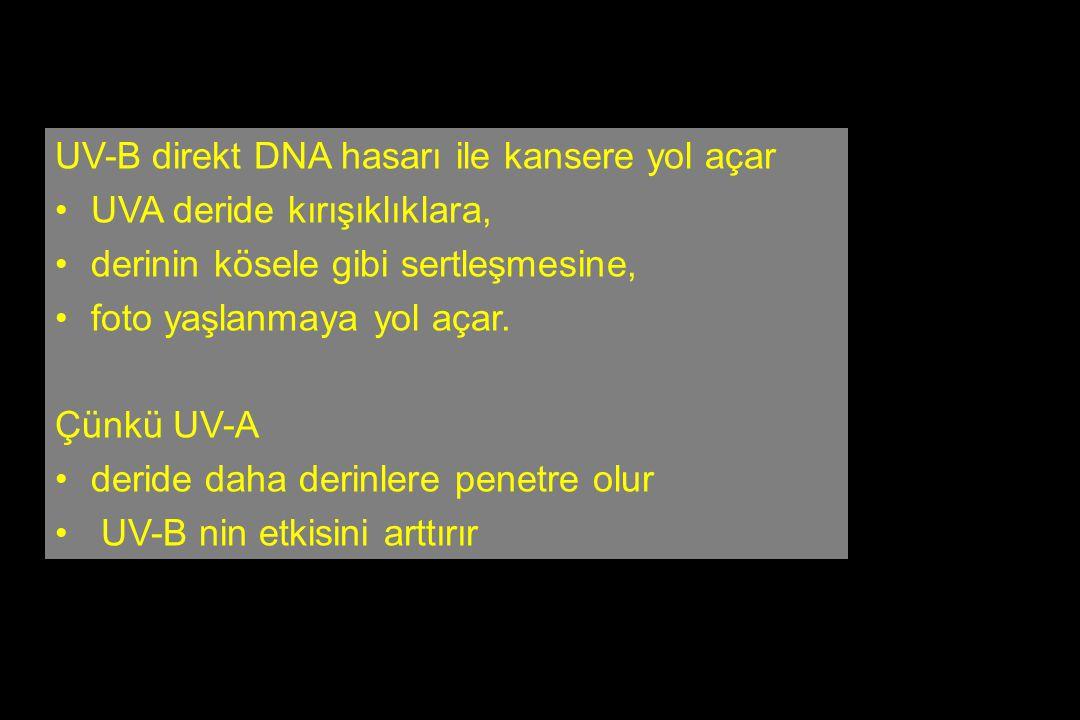 UV-B direkt DNA hasarı ile kansere yol açar UVA deride kırışıklıklara, derinin kösele gibi sertleşmesine, foto yaşlanmaya yol açar. Çünkü UV-A deride