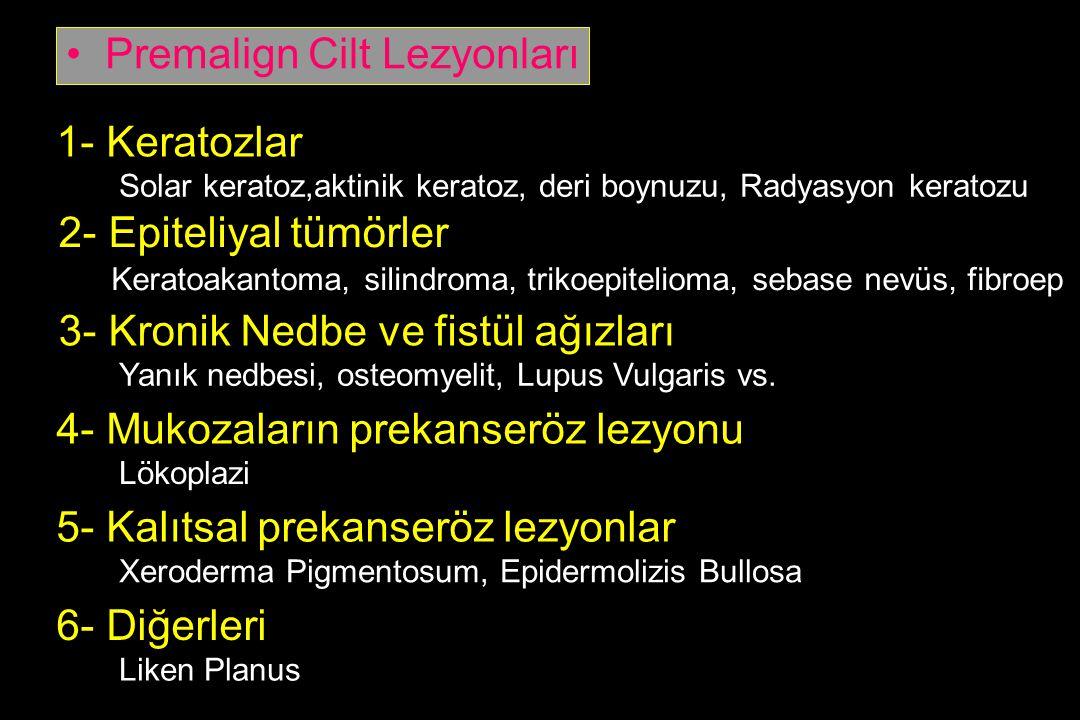 1- Keratozlar 2- Epiteliyal tümörler 3- Kronik Nedbe ve fistül ağızları 4- Mukozaların prekanseröz lezyonu 5- Kalıtsal prekanseröz lezyonlar 6- Diğerl