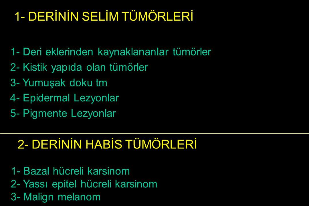 1- Deri eklerinden kaynaklananlar tümörler : Foliküler farklılaşma : Trikoepitelioma, Trikofoliküloma, Trikolemmoma, Pilomatrisoma Sebase farklılaşma: Sebase nevüs, Sebase Hiperplazi Sebase epiteliom Ekrin farklılaşma Silindroma, Syringoma, Ekrin Poroma,Ekrin Spiradenoma Apokrin farklılaşma Apokrin kistadenom 2- Kistik yapıda olan tümörler 3- Yumuşak doku tm 4- Epidermal Lezyonlar 5- Pigmente Lezyonlar 1- DERİNİN SELİM TÜMÖRLERİ