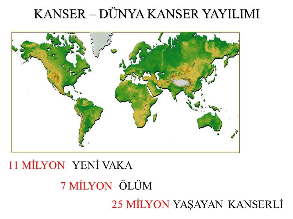 7 MİLYON ÖLÜM 11 MİLYON YENİ VAKA 25 MİLYON YAŞAYAN KANSERLİ KANSER – DÜNYA KANSER YAYILIMI