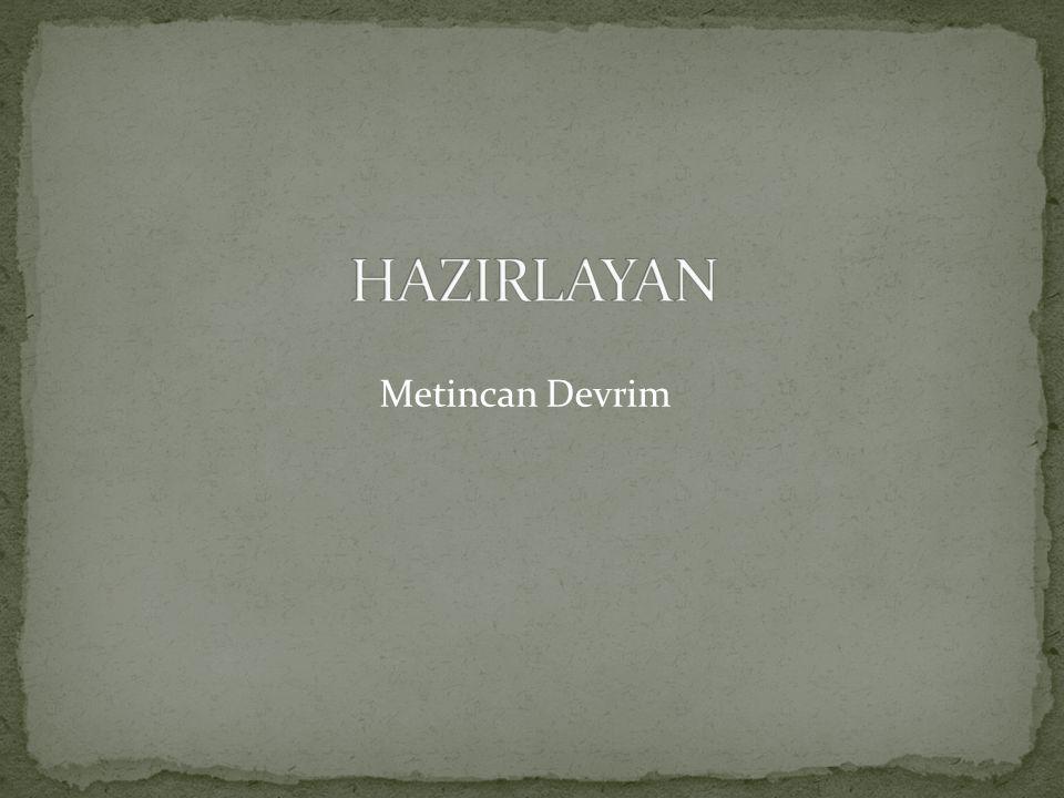 Metincan Devrim