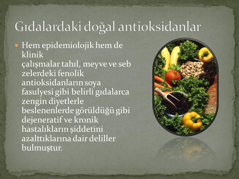 Hem epidemiolojik hem de klinik çalışmalar tahıl, meyve ve seb zelerdeki fenolik antioksidanların soya fasulyesi gibi belirli gıdalarca zengin diyetle