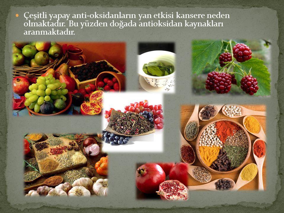 Çeşitli yapay anti-oksidanların yan etkisi kansere neden olmaktadır. Bu yüzden doğada antioksidan kaynakları aranmaktadır.