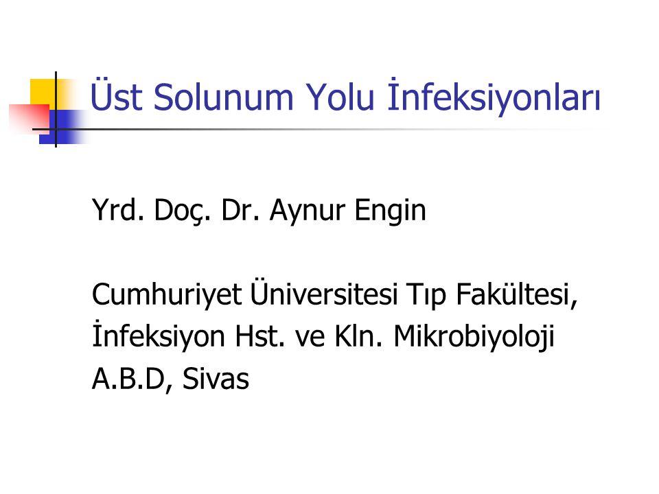 Üst Solunum Yolu İnfeksiyonları Yrd. Doç. Dr. Aynur Engin Cumhuriyet Üniversitesi Tıp Fakültesi, İnfeksiyon Hst. ve Kln. Mikrobiyoloji A.B.D, Sivas
