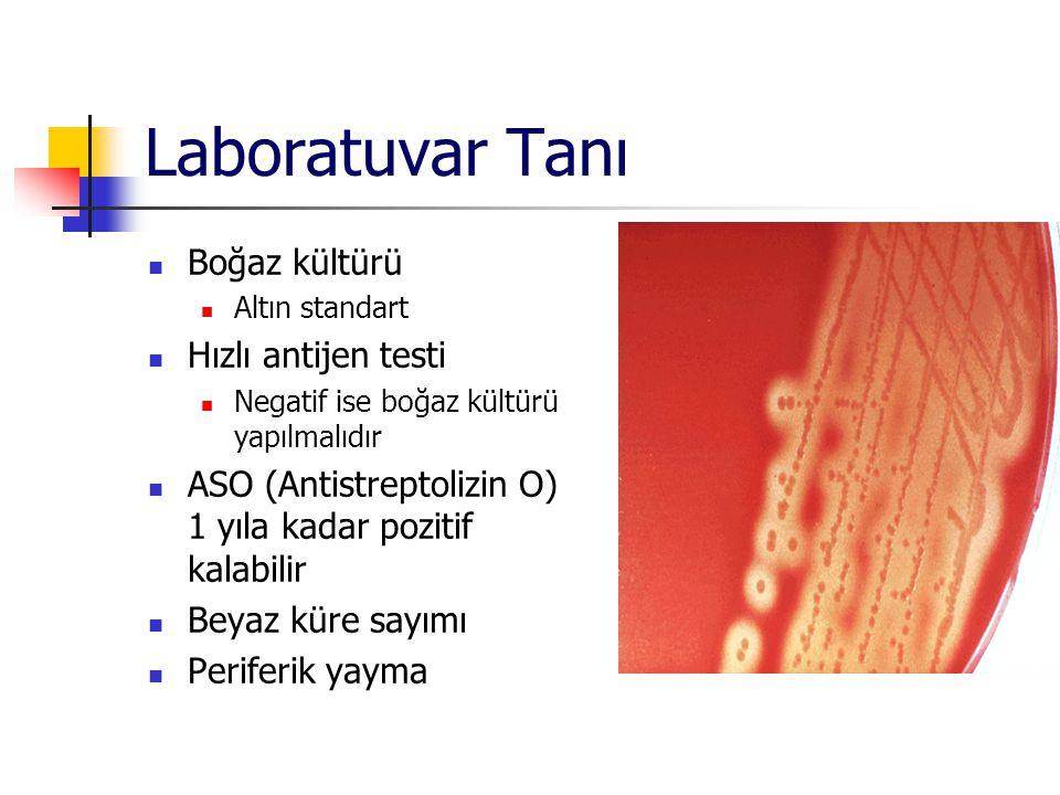 Laboratuvar Tanı Boğaz kültürü Altın standart Hızlı antijen testi Negatif ise boğaz kültürü yapılmalıdır ASO (Antistreptolizin O) 1 yıla kadar pozitif