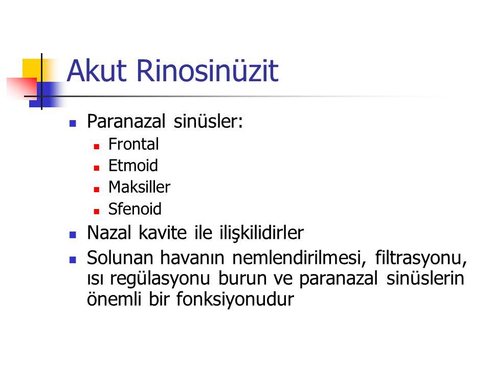 Akut Rinosinüzit Paranazal sinüsler: Frontal Etmoid Maksiller Sfenoid Nazal kavite ile ilişkilidirler Solunan havanın nemlendirilmesi, filtrasyonu, ıs