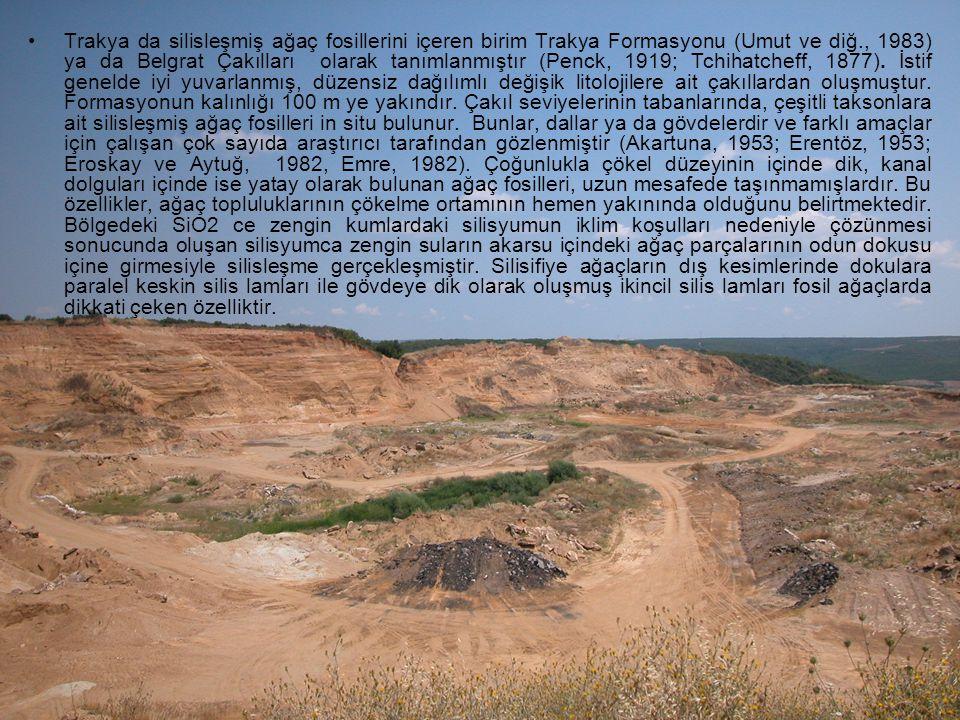 Kaynaklar Akartuna, M., 1953.Çatalca-Karacaköy Bölgesinin Jeolojisi.