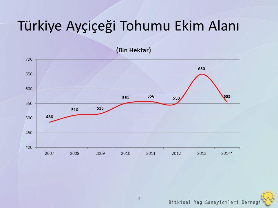 Türkiye Ayçiçeği Tohumu Ekim Alanı 3