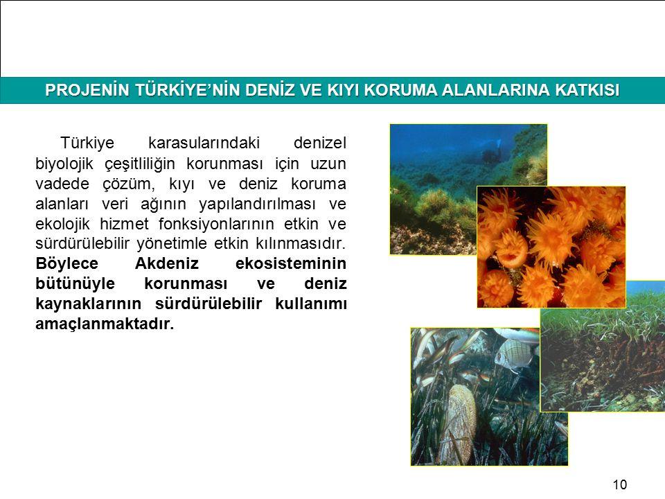 HAFIZAMIZI TAZELEYELİM PROJENİN TÜRKİYE'NİN DENİZ VE KIYI KORUMA ALANLARINA KATKISI 10 Türkiye karasularındaki denizel biyolojik çeşitliliğin korunmas