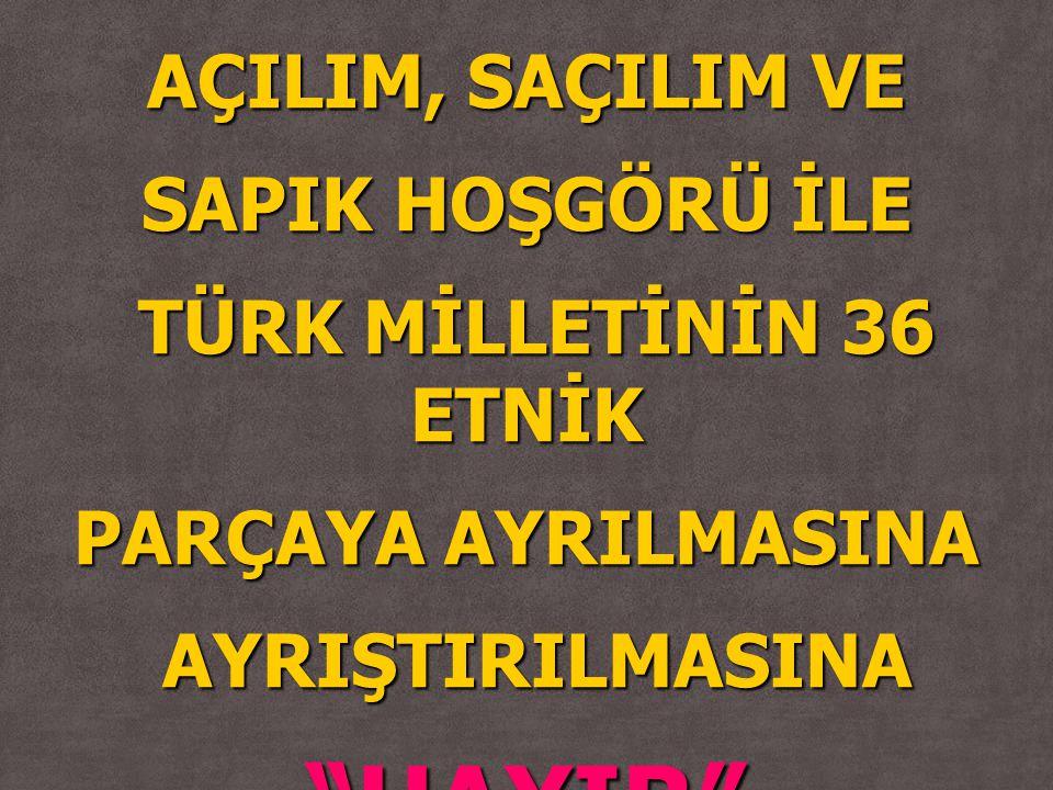 """AÇILIM, SAÇILIM VE SAPIK HOŞGÖRÜ İLE TÜRK MİLLETİNİN 36 ETNİK TÜRK MİLLETİNİN 36 ETNİK PARÇAYA AYRILMASINA AYRIŞTIRILMASINA AYRIŞTIRILMASINA""""HAYIR"""""""