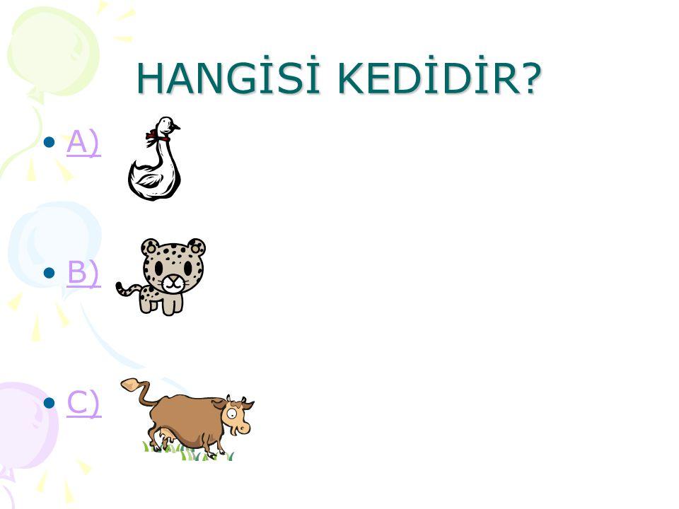 HANGİSİ KEDİDİR? A) B) C)