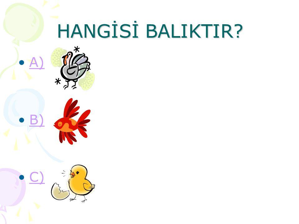 HANGİSİ BALIKTIR? A) B) C)