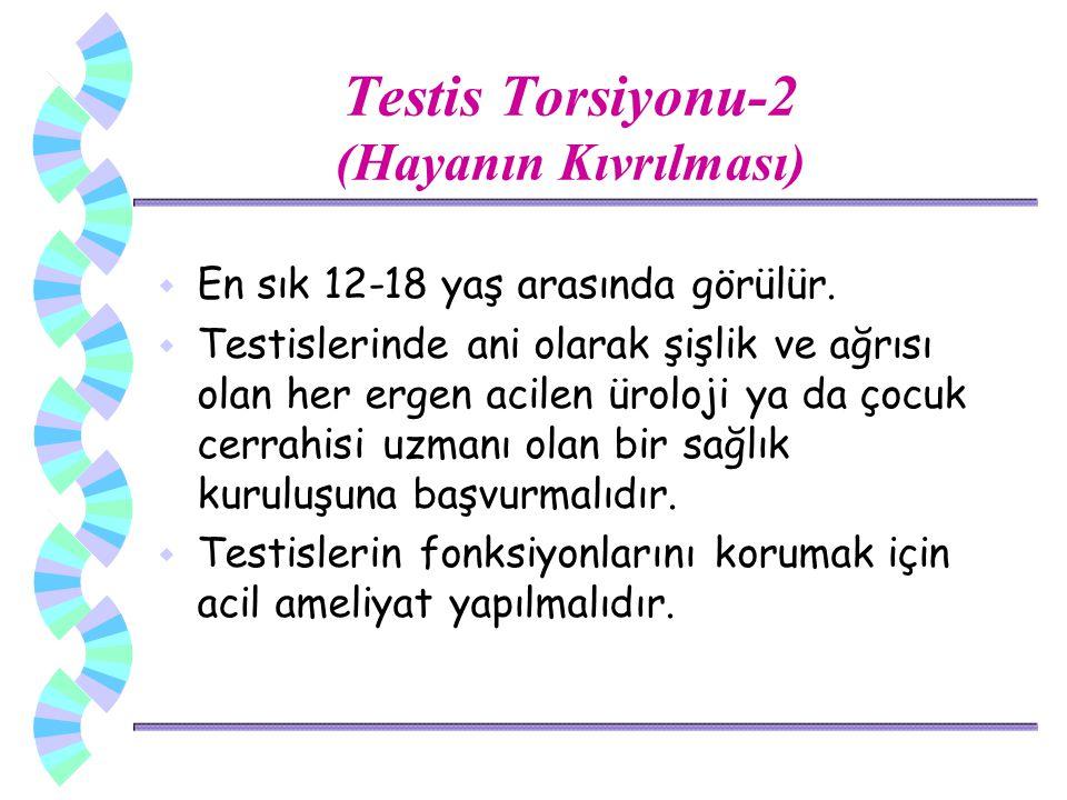 Testis Torsiyonu-2 (Hayanın Kıvrılması) w En sık 12-18 yaş arasında görülür. w Testislerinde ani olarak şişlik ve ağrısı olan her ergen acilen üroloji