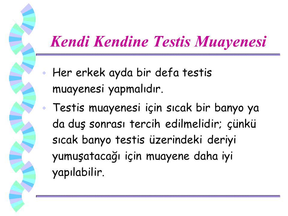 Kendi Kendine Testis Muayenesi w Her erkek ayda bir defa testis muayenesi yapmalıdır. w Testis muayenesi için sıcak bir banyo ya da duş sonrası tercih
