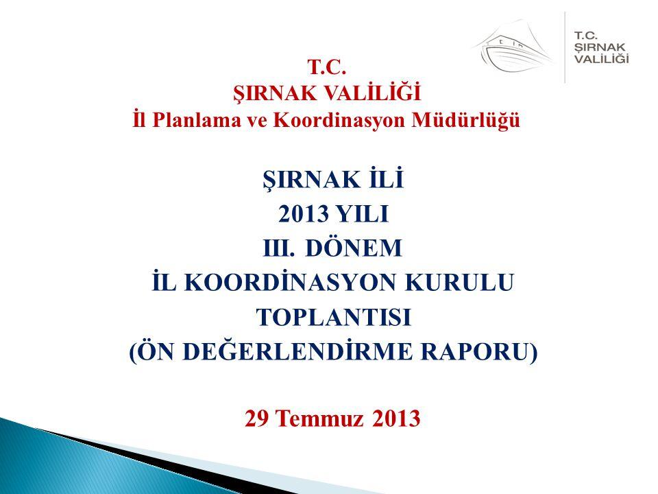 ŞIRNAK İLİ 2013 YILI III.
