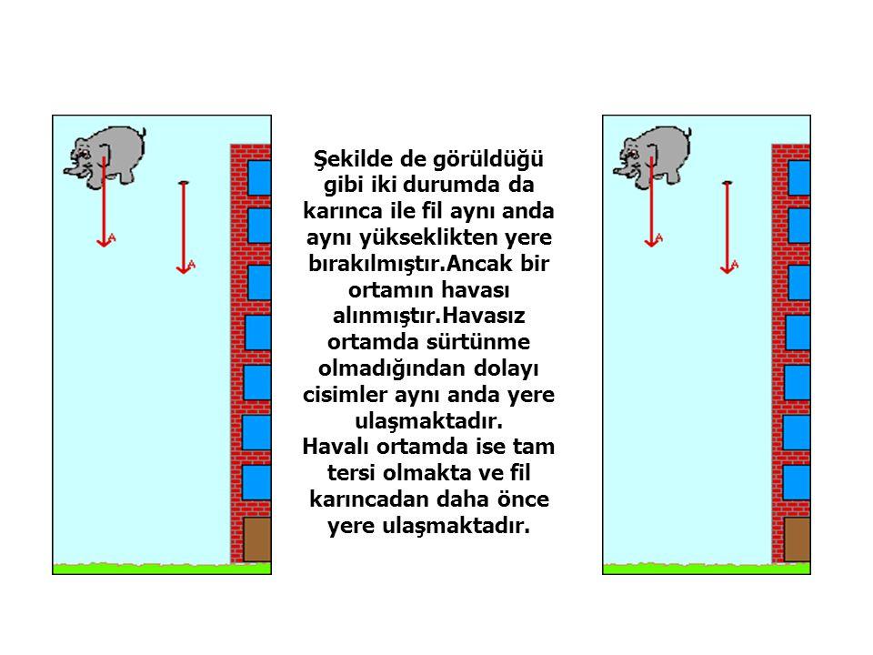Şekilde de görüldüğü gibi iki durumda da karınca ile fil aynı anda aynı yükseklikten yere bırakılmıştır.Ancak bir ortamın havası alınmıştır.Havasız ortamda sürtünme olmadığından dolayı cisimler aynı anda yere ulaşmaktadır.