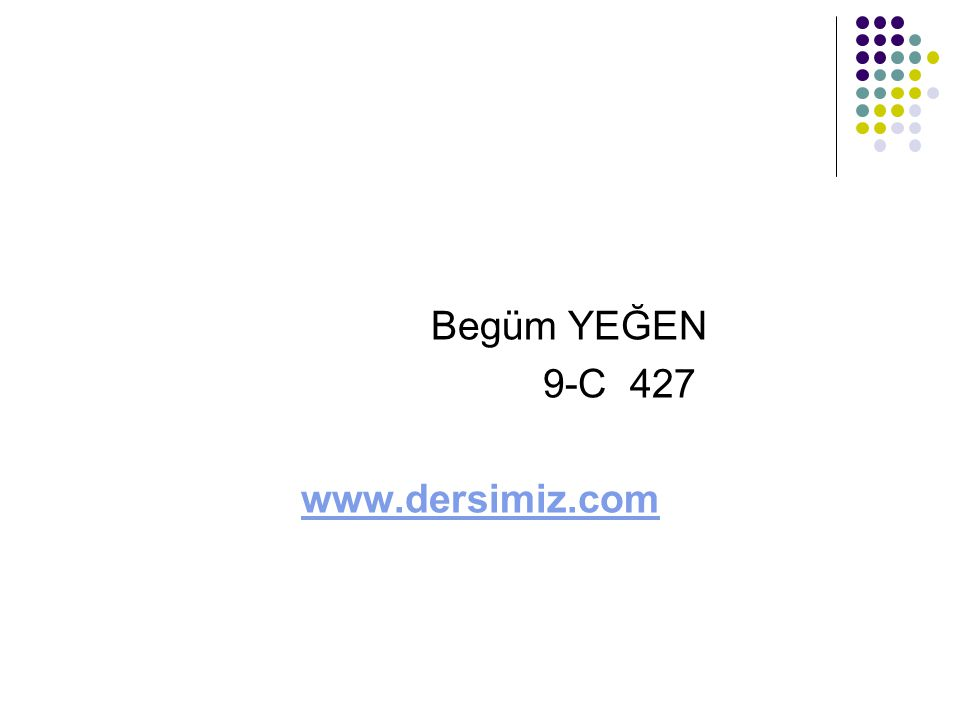 Begüm YEĞEN 9-C 427 www.dersimiz.com