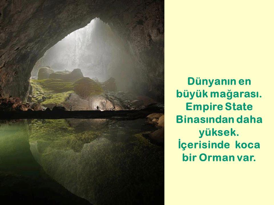 13 Do ğ al travertenlerde sıcak su havuzları, Denizli, Türkiye