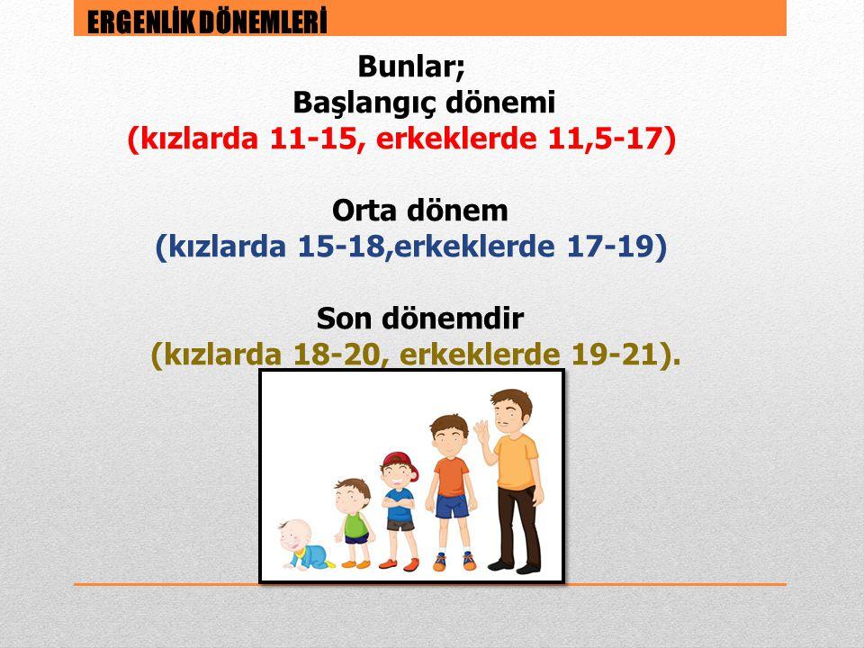 Bunlar; Başlangıç dönemi (kızlarda 11-15, erkeklerde 11,5-17) Orta dönem (kızlarda 15-18,erkeklerde 17-19) Son dönemdir (kızlarda 18-20, erkeklerde 19