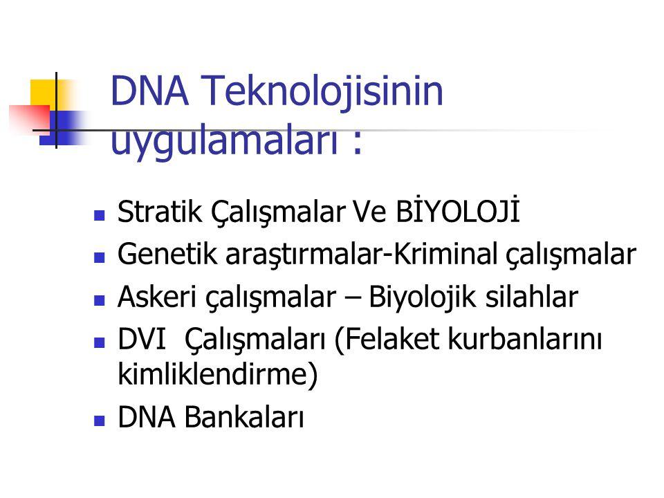 DNA Teknolojisinin uygulamaları : Stratik Çalışmalar Ve BİYOLOJİ Genetik araştırmalar-Kriminal çalışmalar Askeri çalışmalar – Biyolojik silahlar DVI Ç