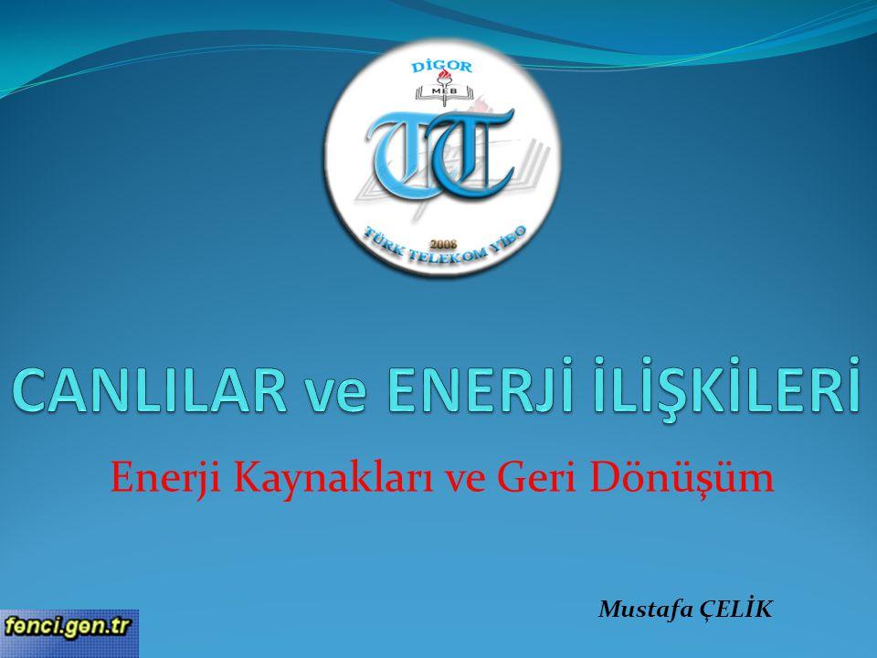 Enerji Kaynakları ve Geri Dönüşüm Mustafa ÇELİK