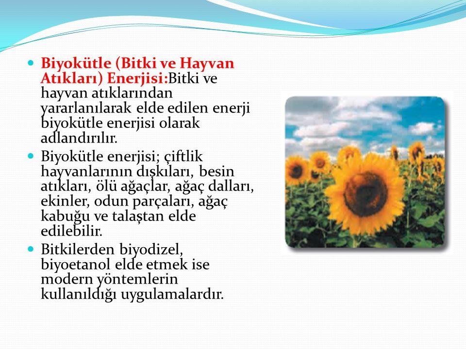 Biyokütle (Bitki ve Hayvan Atıkları) Enerjisi:Bitki ve hayvan atıklarından yararlanılarak elde edilen enerji biyokütle enerjisi olarak adlandırılır. B
