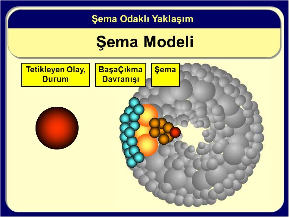 Şema Modeli Şema Odaklı Yaklaşım Tetikleyen Olay, Durum BaşaÇıkma Davranışı Şema