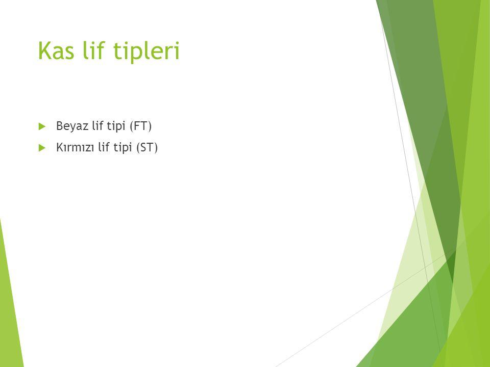 Kas lif tipleri  Beyaz lif tipi (FT)  Kırmızı lif tipi (ST)