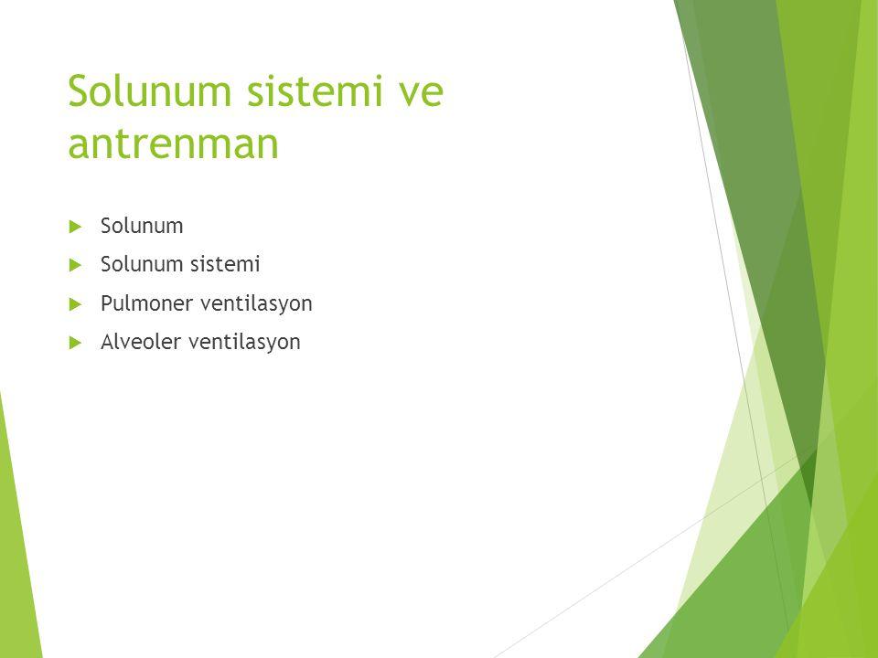 Solunum sistemi ve antrenman  Solunum  Solunum sistemi  Pulmoner ventilasyon  Alveoler ventilasyon