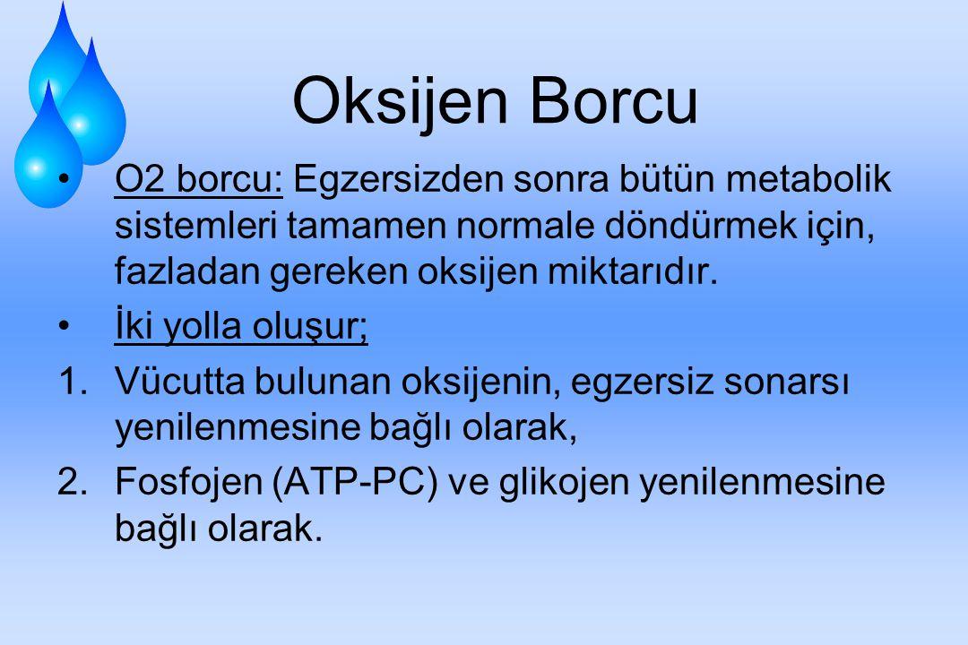 Oksijen Borcu O2 borcu: Egzersizden sonra bütün metabolik sistemleri tamamen normale döndürmek için, fazladan gereken oksijen miktarıdır.