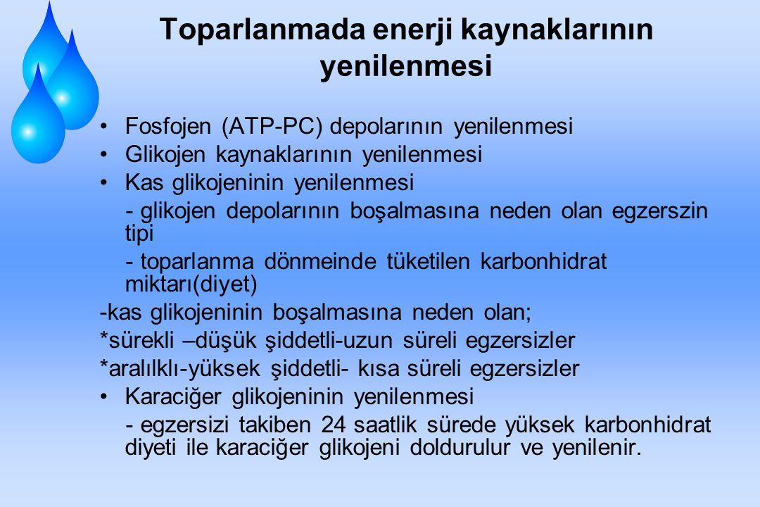ENERJİ DEPOLARININ YENİLENMESİ ATP esas enerji kaynağıdır ve kaslar tarafından direkt olarak kullanılır. CP'nin parçalanması ile ortaya çıkan enerji i