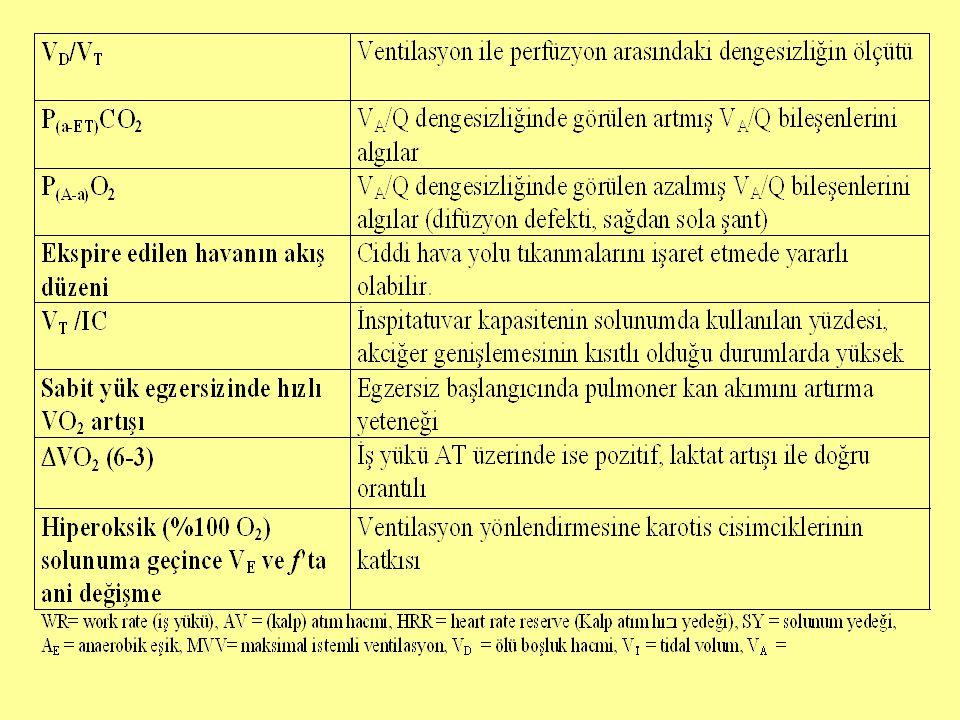 Test raporu Sonuçlara ilişkin başlıca tablo ve şekillerin eklenmesi (özellikle EKG, VO 2, VCO 2, V E ile bağlantılı değişkenlerin egzersiz öncesi, sırası ve sonrası değerlerinin verilmesi) Elde edilen verilere ilişkin kısa bir yorumun yapılması gerekir.