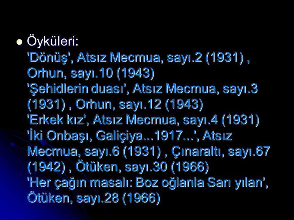 Öyküleri: 'Dönüş', Atsız Mecmua, sayı.2 (1931), Orhun, sayı.10 (1943) 'Şehidlerin duası', Atsız Mecmua, sayı.3 (1931), Orhun, sayı.12 (1943) 'Erkek kı