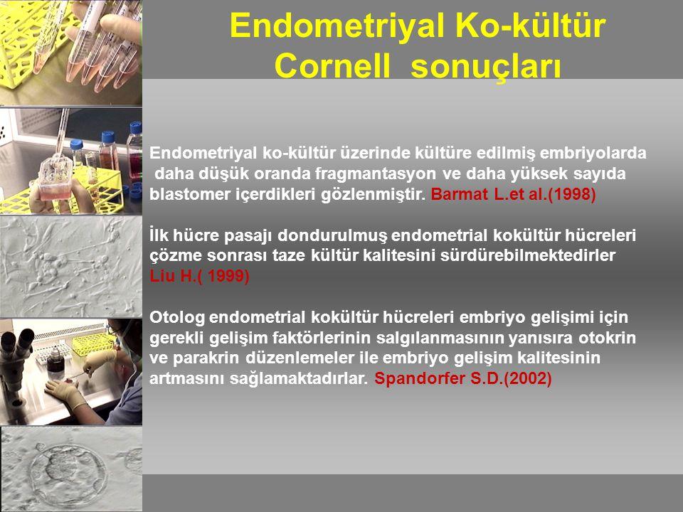 İnsan embriyolarının endometrial kokültür üzerinde kültüre edilmesi güvenli, fizyolojik, etik ve etkili bir yöntemdir.