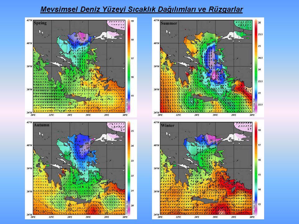Mevsimsel Deniz Yüzeyi Sıcaklık Dağılımları ve Rüzgarlar