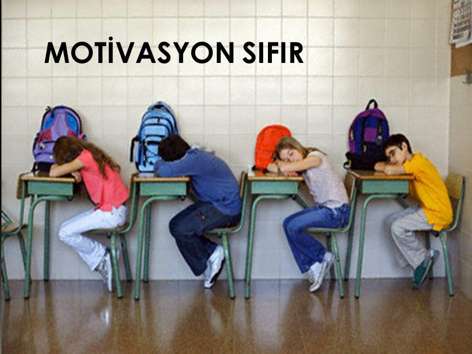 Temel olarak motivasyonun iki seviyesi vardır.