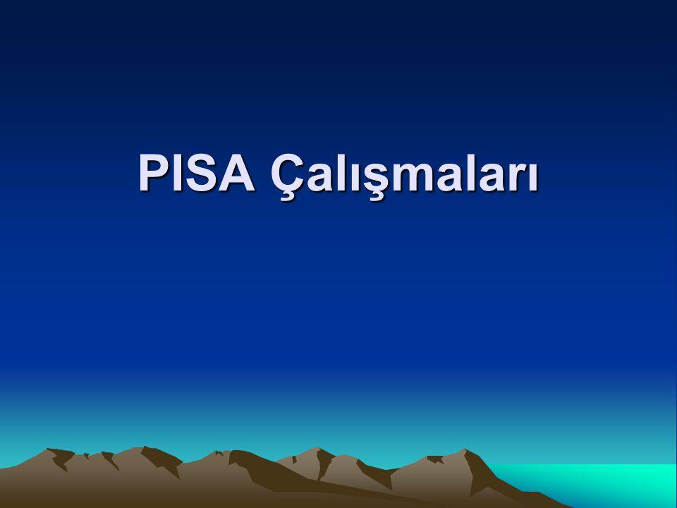 PISA Çalışmaları