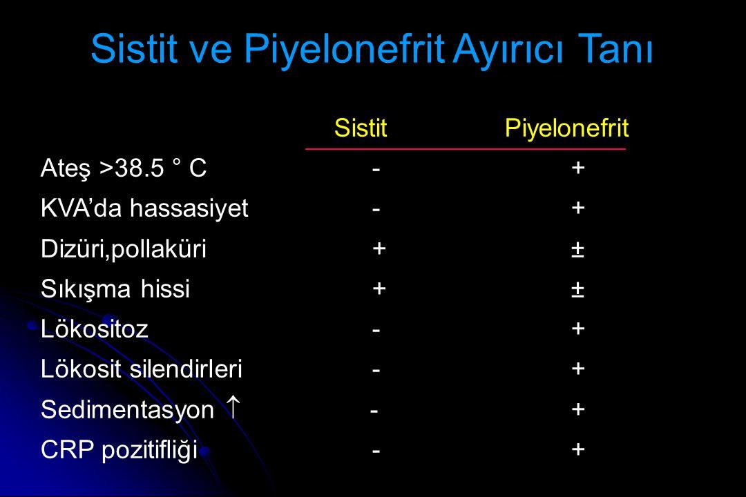 Sistit ve Piyelonefrit Ayırıcı Tanı SistitPiyelonefrit Ateş >38.5 ° C-+ KVA'da hassasiyet-+ Dizüri,pollaküri+± Sıkışma hissi+± Lökositoz -+ Lökosit silendirleri -+ Sedimentasyon  -+ CRP pozitifliği-+