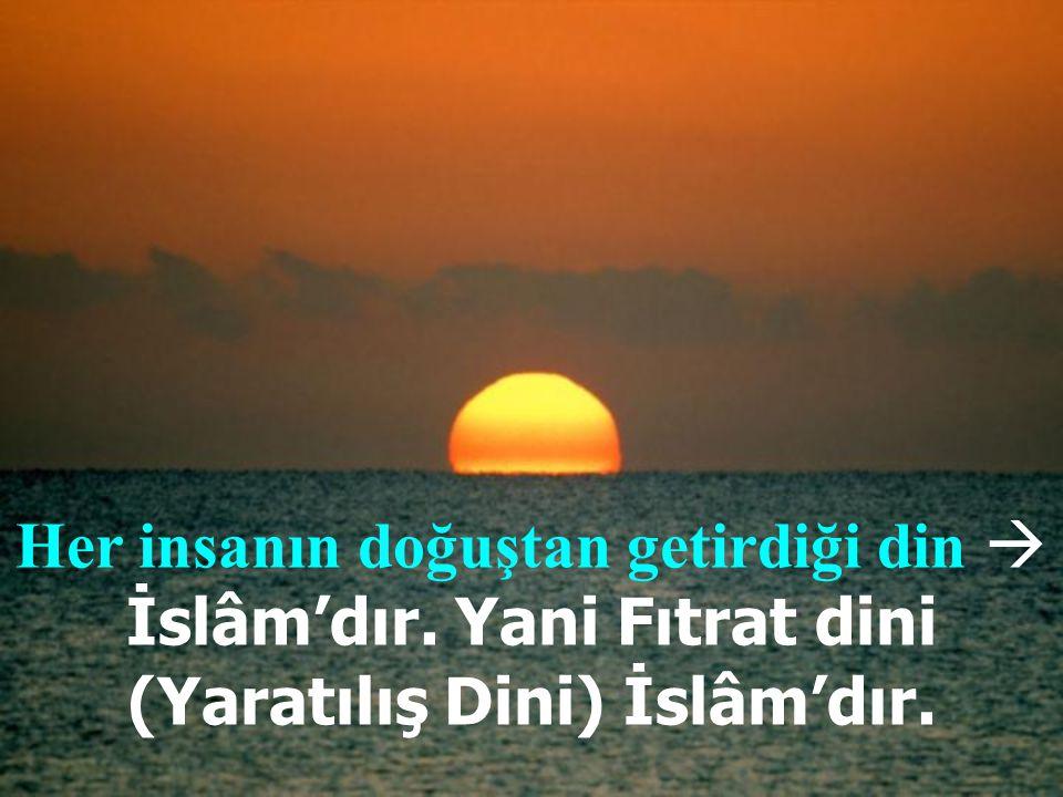8. Din, Allah'a nasıl ibadet edileceğini bildirir.