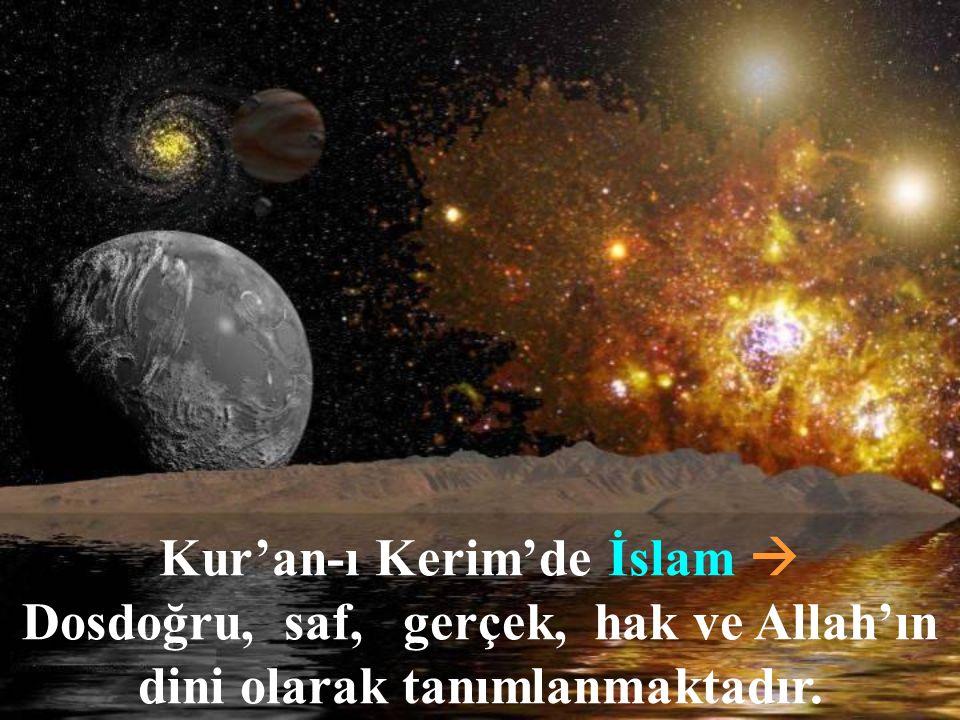 İnsan, Din duygusu sayesinde Allah'a giden yolu bulur.