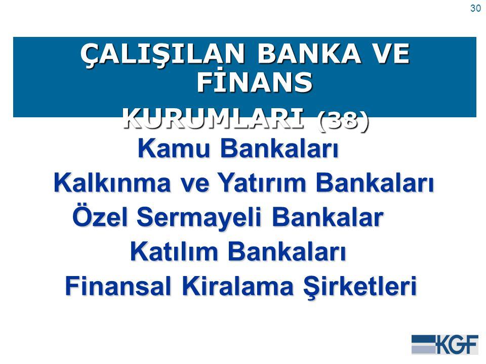 30 ÇALIŞILAN BANKA VE FİNANS KURUMLARI (38) Kamu Bankaları Kalkınma ve Yatırım Bankaları Özel Sermayeli Bankalar Katılım Bankaları Finansal Kiralama Şirketleri