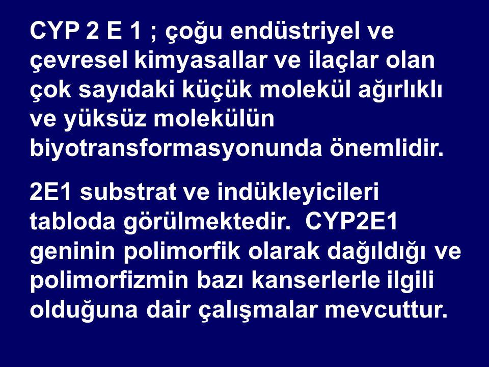 CYP 2 E 1 ; çoğu endüstriyel ve çevresel kimyasallar ve ilaçlar olan çok sayıdaki küçük molekül ağırlıklı ve yüksüz molekülün biyotransformasyonunda ö