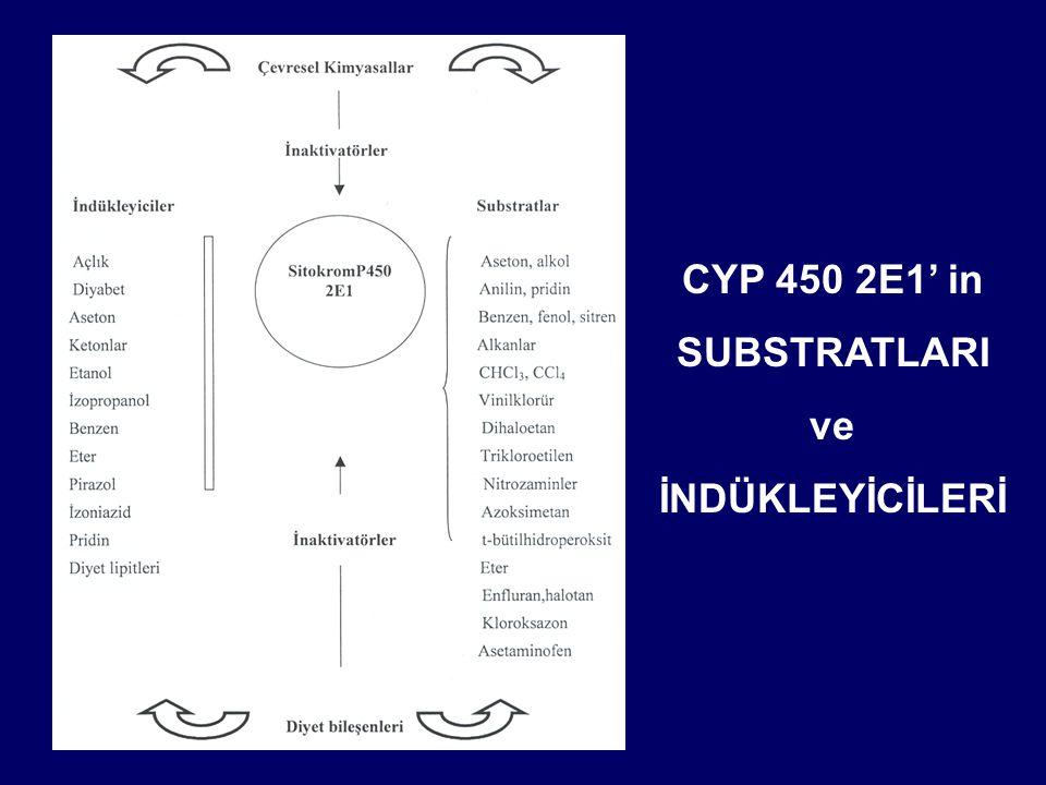 CYP 450 2E1' in SUBSTRATLARI ve İNDÜKLEYİCİLERİ