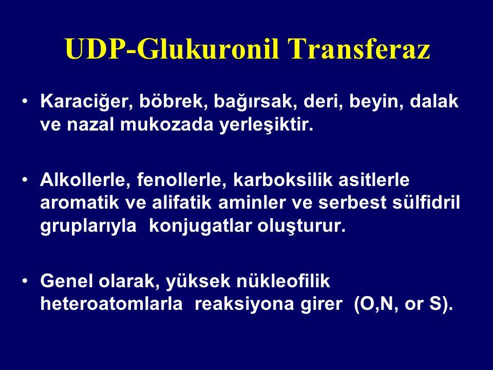 UDP-Glukuronil Transferaz Karaciğer, böbrek, bağırsak, deri, beyin, dalak ve nazal mukozada yerleşiktir. Alkollerle, fenollerle, karboksilik asitlerle