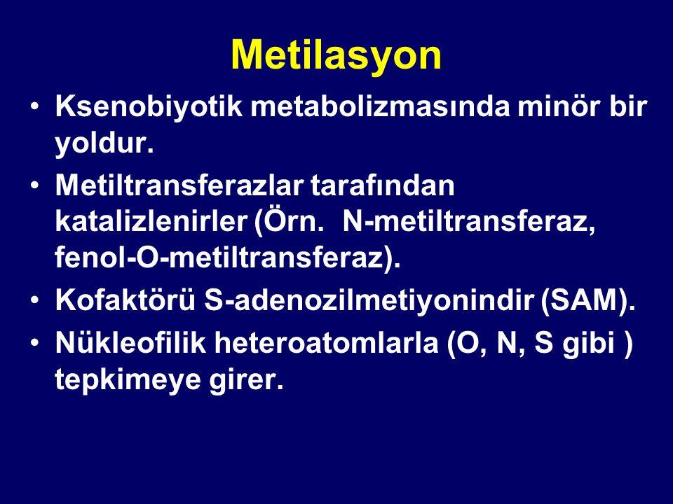 Metilasyon Ksenobiyotik metabolizmasında minör bir yoldur. Metiltransferazlar tarafından katalizlenirler (Örn. N-metiltransferaz, fenol-O-metiltransfe
