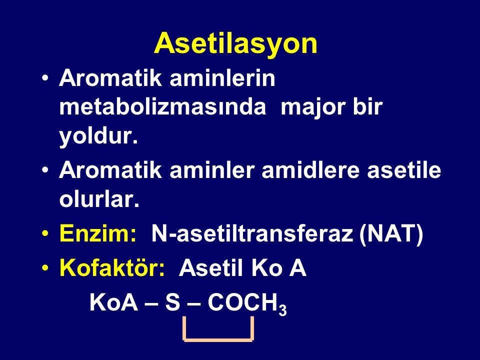 Asetilasyon Aromatik aminlerin metabolizmasında major bir yoldur. Aromatik aminler amidlere asetile olurlar. Enzim: N-asetiltransferaz (NAT) Kofaktör: