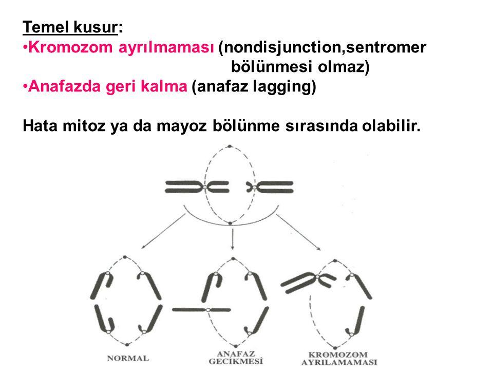Temel kusur: Kromozom ayrılmaması (nondisjunction,sentromer bölünmesi olmaz) Anafazda geri kalma (anafaz lagging) Hata mitoz ya da mayoz bölünme sıras